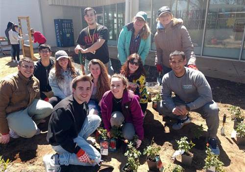 A group of students planting a garden